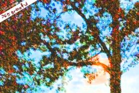 365 - 10-02-2014